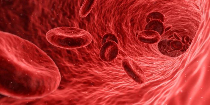 Detalle glóbulos rojos